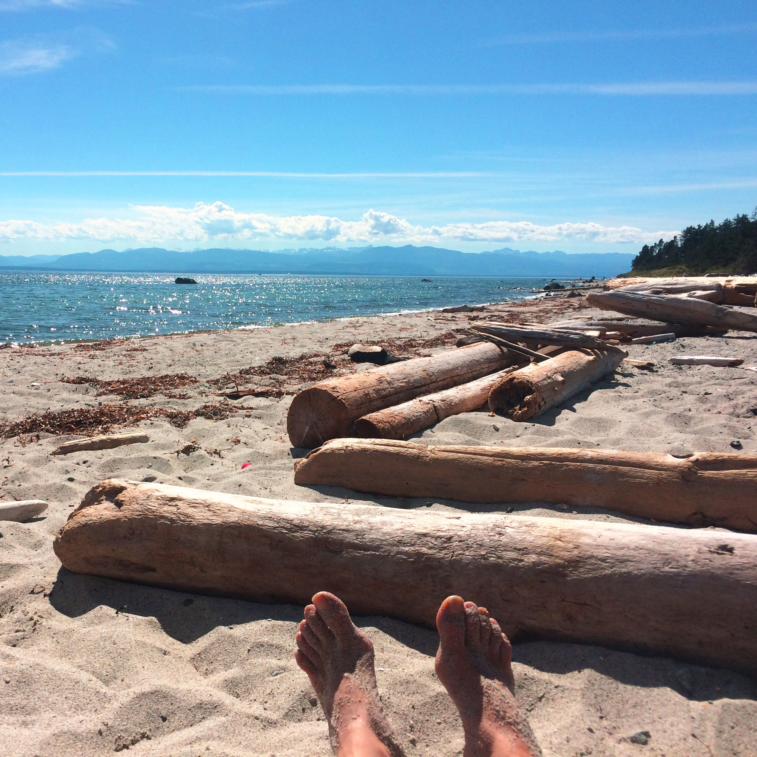 Beach Island: Lund Harbour To Savary Island Beaches